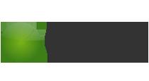 BDMG Logo